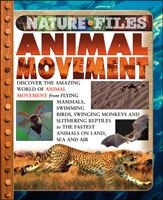 Animal Movement