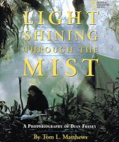 Light Shining Through the Mist