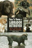 Guide to Owning A Labrador Retriever