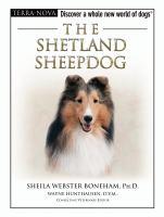 The Shetland Sheepdog