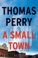 A small town : a novel