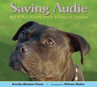 Saving Audie