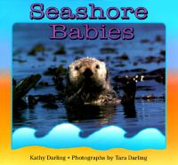 Seashore Babies
