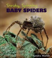 Sneaky, Spinning, Baby Spiders