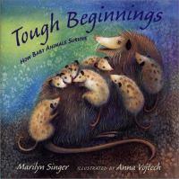 Tough Beginnings