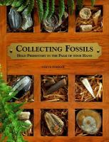 Collecting Fossils