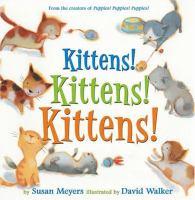 Kittens! Kittens! Kittens!