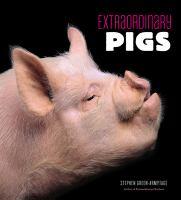 Extraordinary Pigs