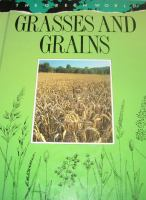 Grasses And Grains