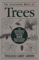 Illustrated Book of Trees: With Keys for Summer and Winter Identification