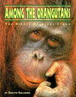 Among the Orangutans