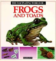The Fascinating World of Frogs and Toads