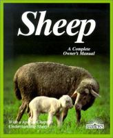 Sheep, Everything About Housing, Care, Feeding, and Sicknesses