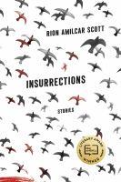 Insurrections
