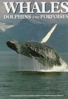 Whales, Dolphins & Porpoises