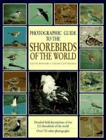 Photographic Guide to the Shorebirds of the World