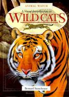 A Visual Introduction to Wild Cats