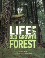 Life in An Old Growth Forest