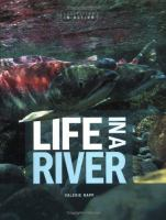 Life in A River