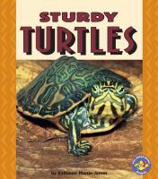Sturdy Turtles