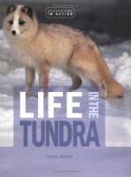 Life in the Tundra