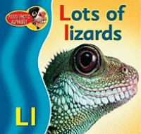 Lots of Lizards