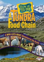 A Tundra Food Chain
