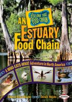 An Estuary Food Chain