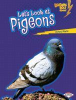 Let's Look at Pigeons