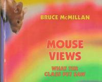 Mouse Views