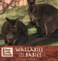 Wallabies and Their Babies