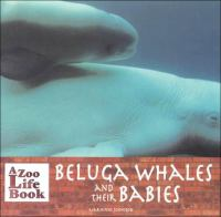 Beluga Whales and Their Babies