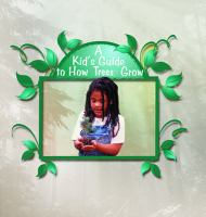 A Kid's Guide to How Trees Grow