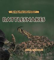 Rattlesnakes