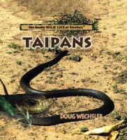 Taipans