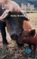 Little Pigs, Big Pigs