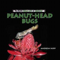 Peanut-head Bugs