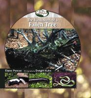 The Ecosystem of A Fallen Tree