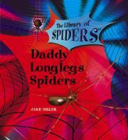 Daddy Longlegs Spiders