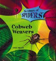 Cobweb Weavers