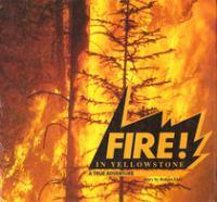 Fire! In Yellowstone