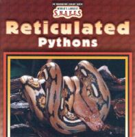 Reticulated Pythons