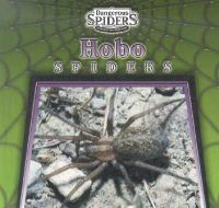 Hobo Spiders