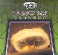 Yellow Sac Spiders