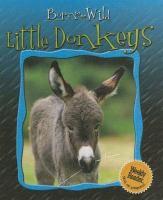 Little Donkeys