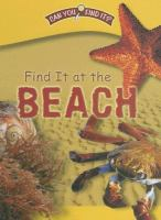 Find It at the Beach