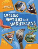 Amazing Reptiles And Amphibians