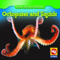 Octopuses and Squids