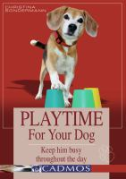 Playtime for your Dog