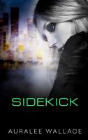 Image: Sidekick